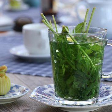 Verse thee uit de pluktuin